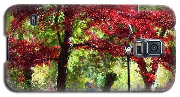 Central Park In Manhattan Galaxy S5 Case