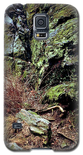 Central Park Rock Formation Galaxy S5 Case by Sandy Moulder