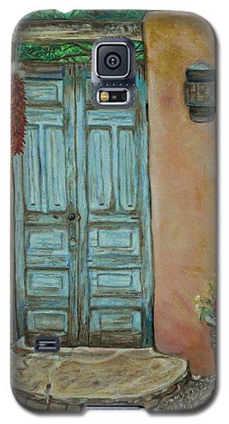 Cerrillios Blue Door Galaxy S5 Case