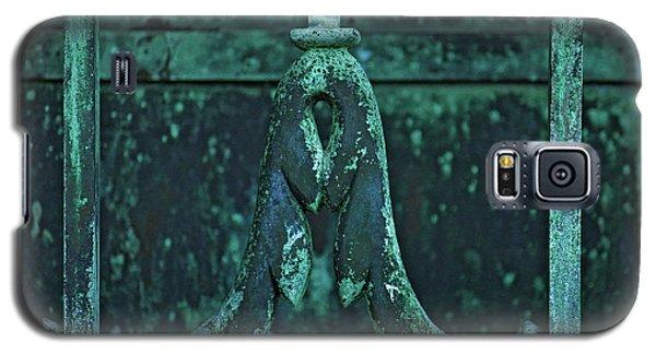 Galaxy S5 Case featuring the photograph Certainty by Rowana Ray