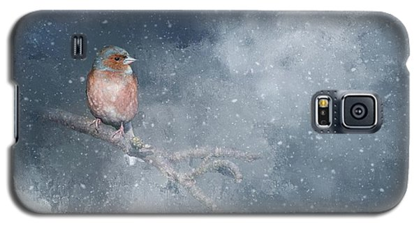 Chaffinch On A Cold Winter Day Galaxy S5 Case