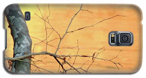 Chagrin River Gold Galaxy S5 Case