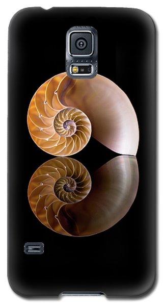 Chambered Nautilus Galaxy S5 Case