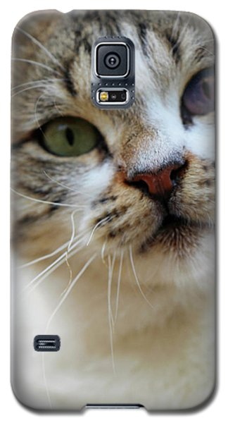 Galaxy S5 Case featuring the photograph Changing Colors by Munir Alawi