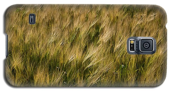 Galaxy S5 Case featuring the photograph Changing Wheat by Dylan Punke
