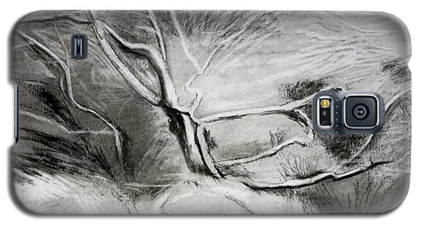 Charcoal Tree Galaxy S5 Case