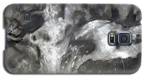 Charcoal Waterfall Galaxy S5 Case