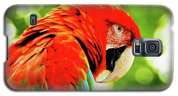 Charlie Galaxy S5 Case