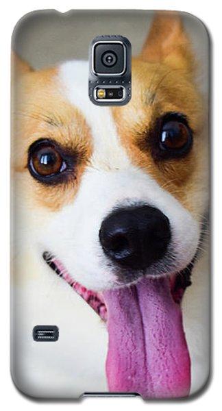 Charlie The Corgi Galaxy S5 Case