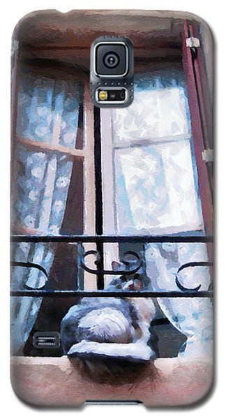 Chat Bleu Dans La Fenetre Rose Galaxy S5 Case