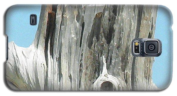 Chatham Driftwood Galaxy S5 Case by David Klaboe