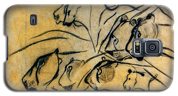 chauvet cave lions Clear Galaxy S5 Case