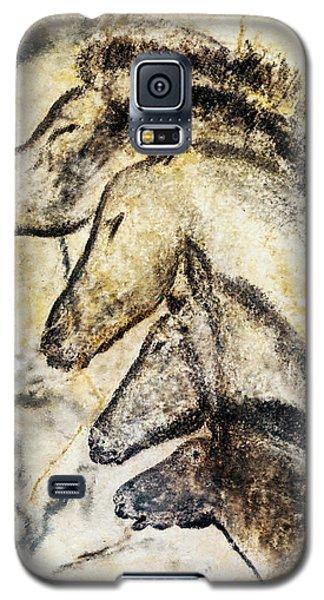 Chauvet Horses Galaxy S5 Case