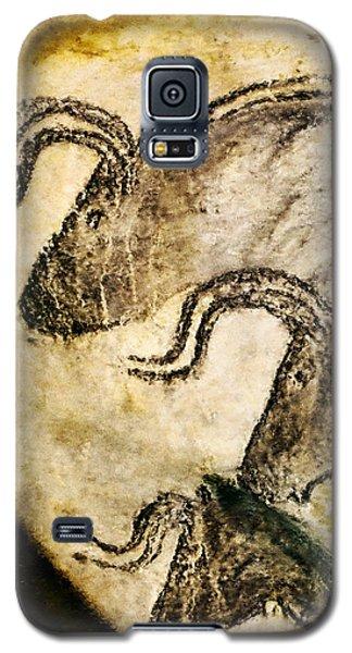Chauvet - Three Aurochs Galaxy S5 Case