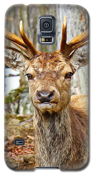 Check Out My Rack Galaxy S5 Case