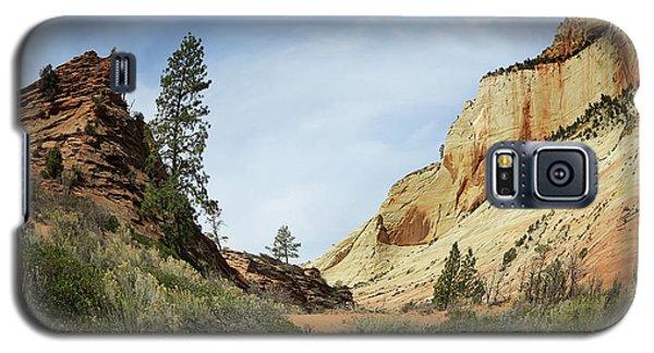 Checkerboard Mesa Galaxy S5 Case