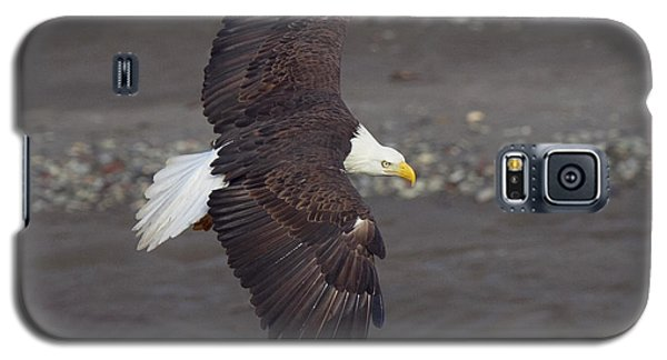 Galaxy S5 Case featuring the photograph Checking Out The River by Elvira Butler