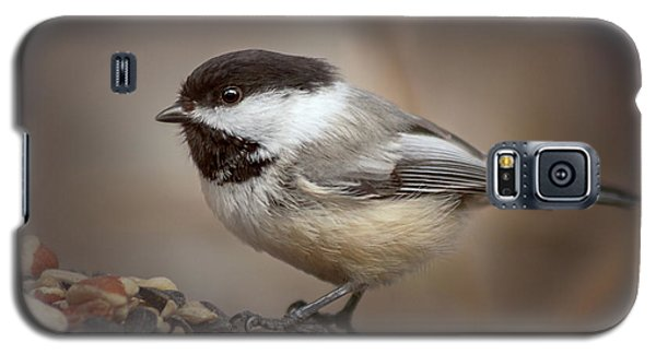 Galaxy S5 Case featuring the photograph Cheeky Chickadee by Debby Herold