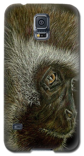 Cheeky Monkey Galaxy S5 Case