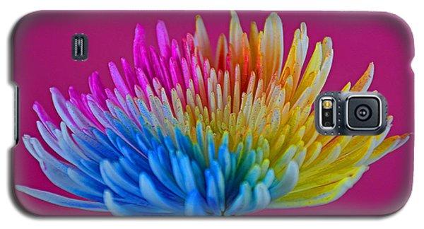 Cheerful Galaxy S5 Case