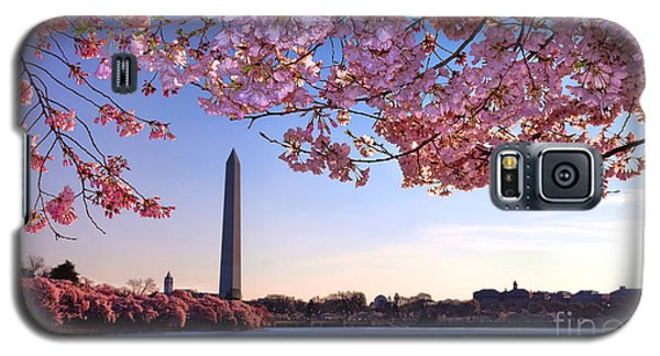 Washington D.c Galaxy S5 Case - Cheery Cherry Dc by Olivier Le Queinec