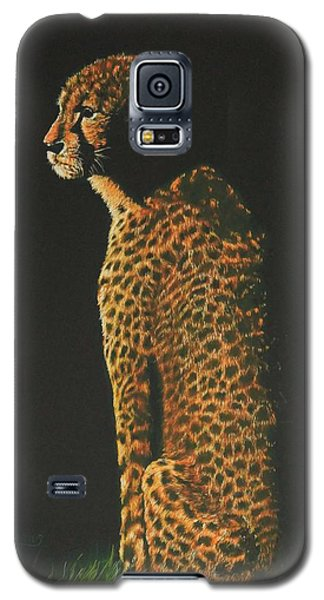 Cheetah At Sunset Galaxy S5 Case