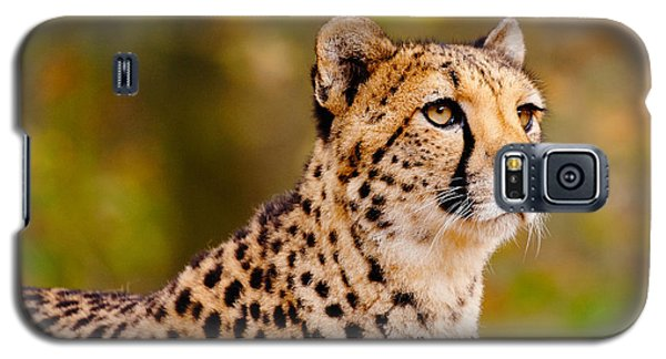 Galaxy S5 Case featuring the photograph Cheetah In A Forest by Nick  Biemans