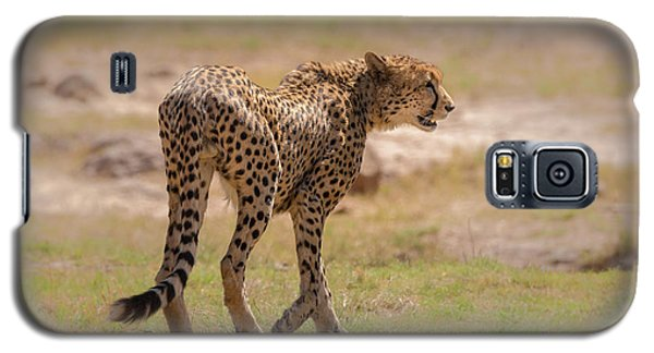Cheetah Galaxy S5 Case