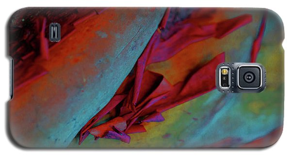 Cherish Galaxy S5 Case by Richard Laeton