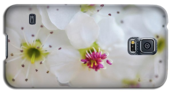 Galaxy S5 Case featuring the photograph Cherry Blooms by Darren White
