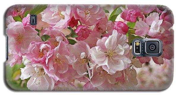 Cherry Blossom Closeup Galaxy S5 Case by Gill Billington