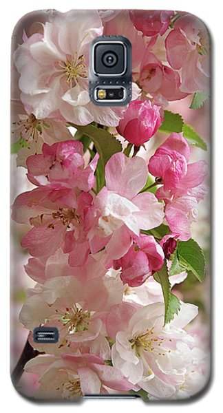 Galaxy S5 Case featuring the photograph Cherry Blossom Closeup Vertical by Gill Billington