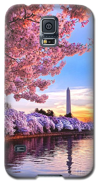 Cherry Blossom Festival  Galaxy S5 Case by Olivier Le Queinec