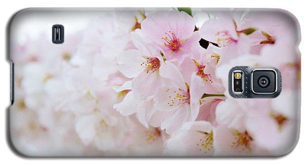 Cherry Blossom Focus Galaxy S5 Case