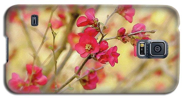 Cherry Blossom  Galaxy S5 Case