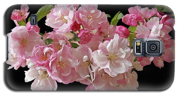 Cherry Blossom On Black Galaxy S5 Case by Gill Billington