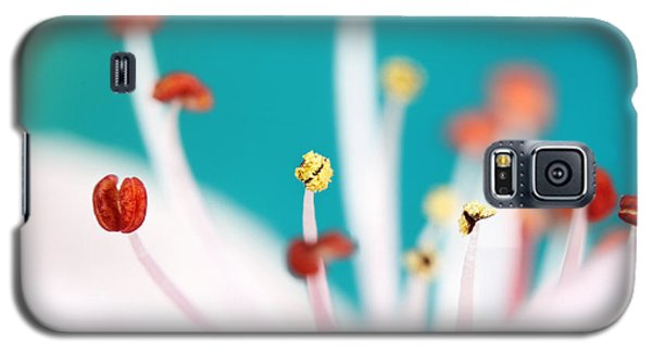 Galaxy S5 Case featuring the photograph Cherry Blossom by Sharon Johnstone