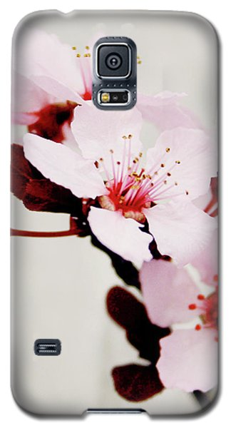 Galaxy S5 Case featuring the mixed media Cherry Blossoms 1- Art By Linda Woods by Linda Woods