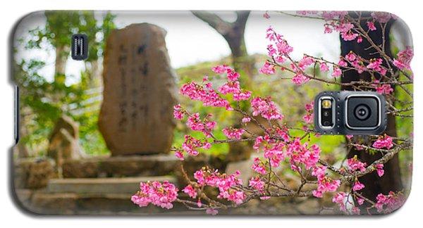 Cherry Blossoms 11 Galaxy S5 Case