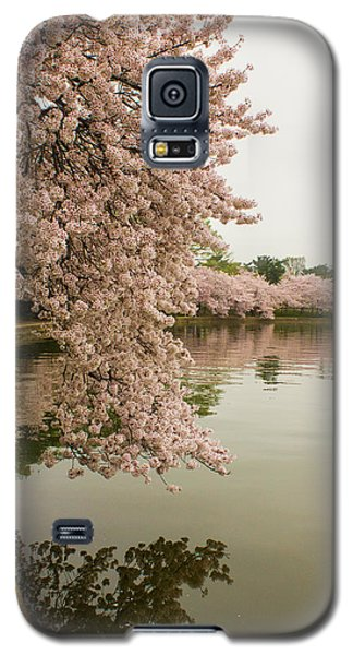 Cherry Blossoms Along The Tidal Basin 8x10 Galaxy S5 Case