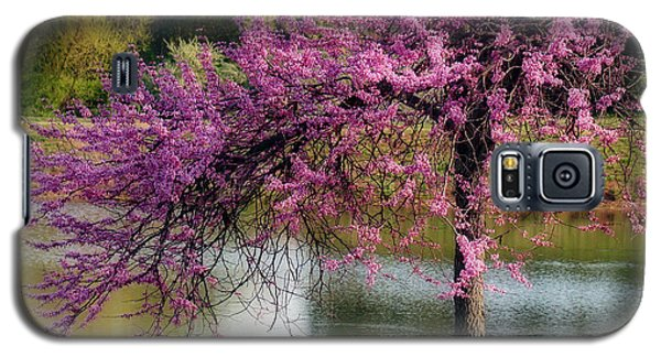 Cherry Blossoms By The Pond Galaxy S5 Case by Sue Melvin