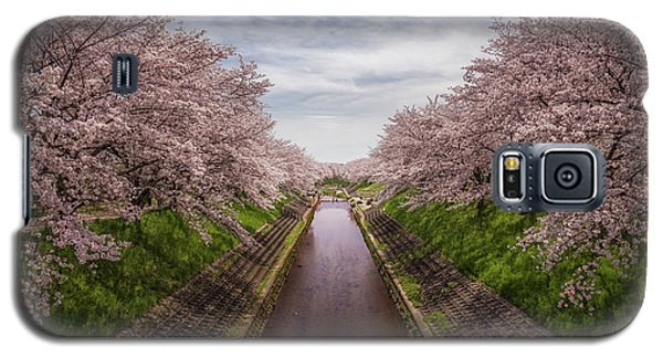 Galaxy S5 Case featuring the photograph Cherry Blossoms In Nara by Rikk Flohr