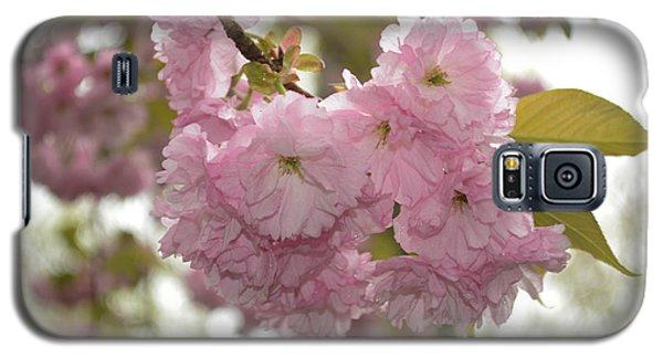 Galaxy S5 Case featuring the photograph Cherry Blossoms by Linda Geiger