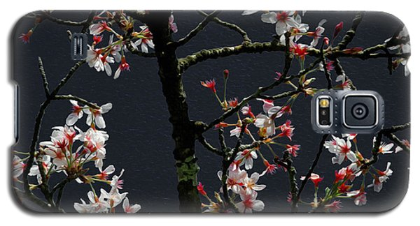 Cherry Blossoms On Dark Bkgrd Galaxy S5 Case