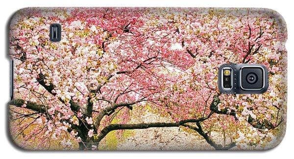 Cherry Delight Galaxy S5 Case by Jessica Jenney
