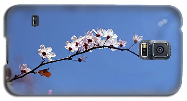 Cherry Flowers With Lens Flare Galaxy S5 Case