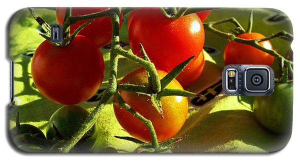 Galaxy S5 Case featuring the photograph Cherry Tomatoes by Shawna Rowe