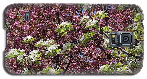 Cherry Tree And Pear Blossoms Galaxy S5 Case