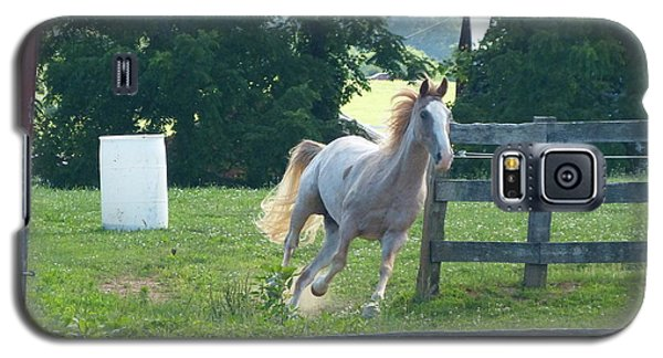 Chester On The Run Galaxy S5 Case by Donald C Morgan