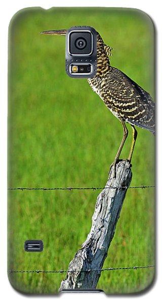 Chevron Galaxy S5 Case by Tony Beck